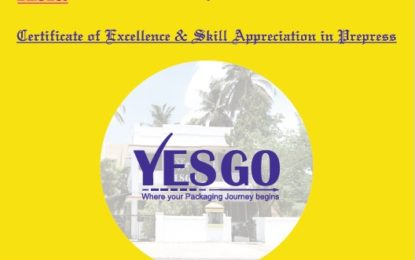 YESGO:Where your Packaging journey begins